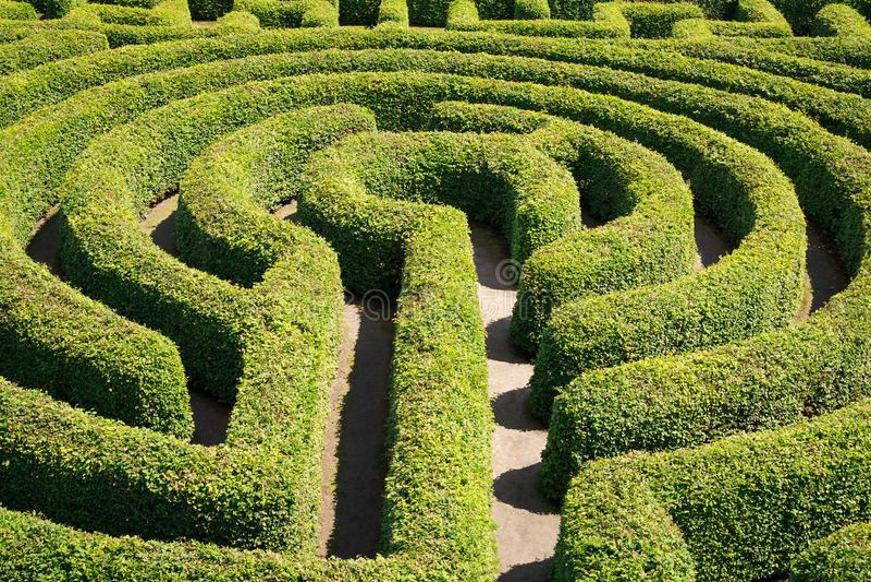 O verde cobre o labirinto foto de stock royalty free