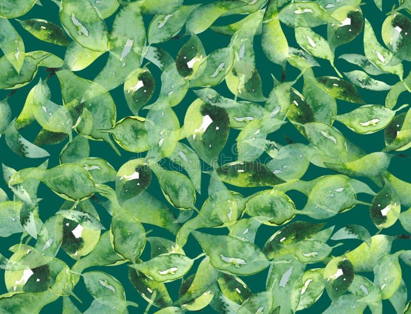 O verde da aquarela deixa o fundo sem emenda do teste padrão para a matéria têxtil ou a textura ilustração royalty free