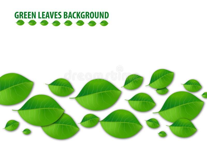 O verde deixa o fundo ilustração do vetor