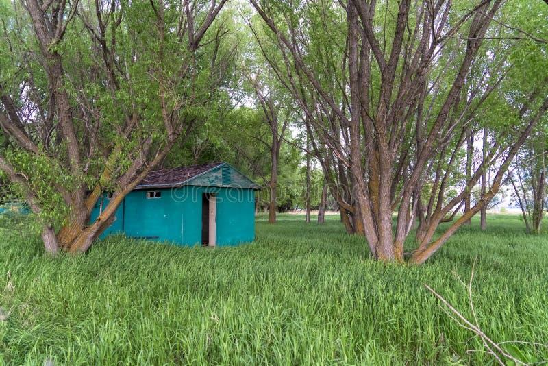 O verde derramou em um campo gramíneo cercado por árvores sob o céu brilhante imagens de stock