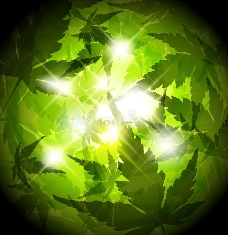 O verde fresco da mola folheia fundo abstrato ilustração royalty free