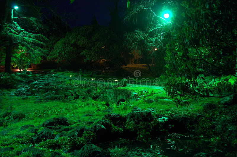 O verde mágico iluminou o jardim de rocha no parque imagem de stock