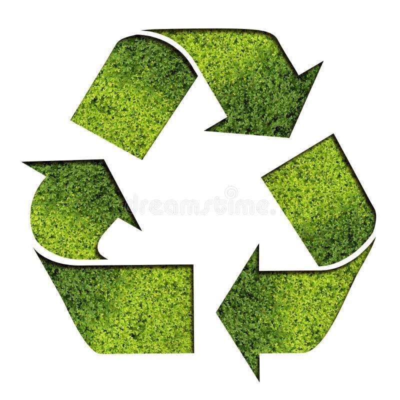 O verde recicl o símbolo ilustração royalty free