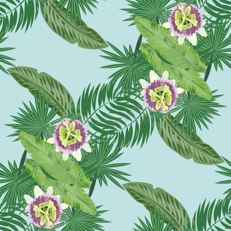 O verde tropical do vetor deixa a fruto de paixão o teste padrão sem emenda fundo azul fotografia de stock royalty free