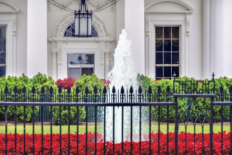 O vermelho branco da porta da casa floresce o Washington DC da avenida de Pensilvânia fotos de stock