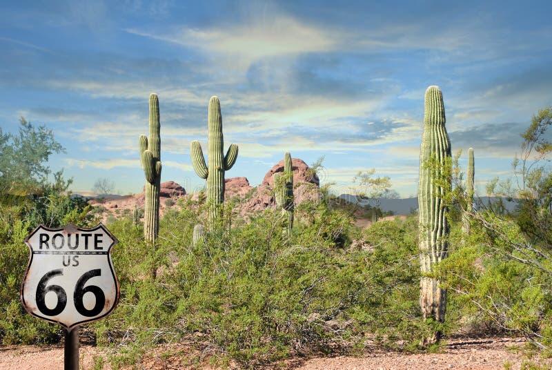O vermelho fabuloso do cacto do cenário de Route 66 balança o deserto bonito do Arizona do por do sol imagem de stock
