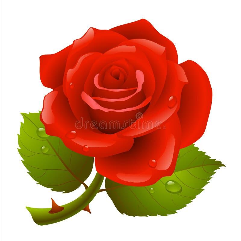 O vermelho levantou-se ilustração royalty free