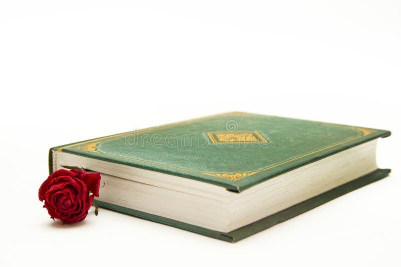 O vermelho levantou-se no livro próximo imagens de stock