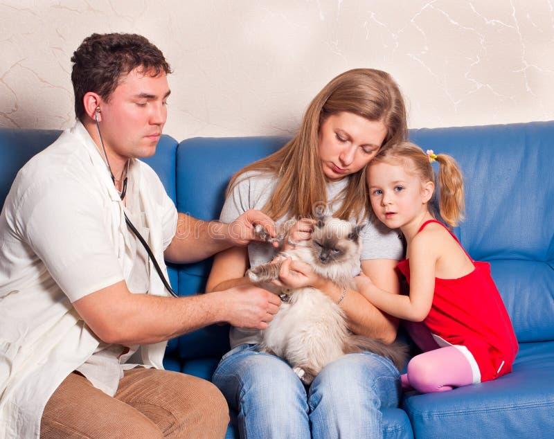 O veterinário fotografia de stock royalty free