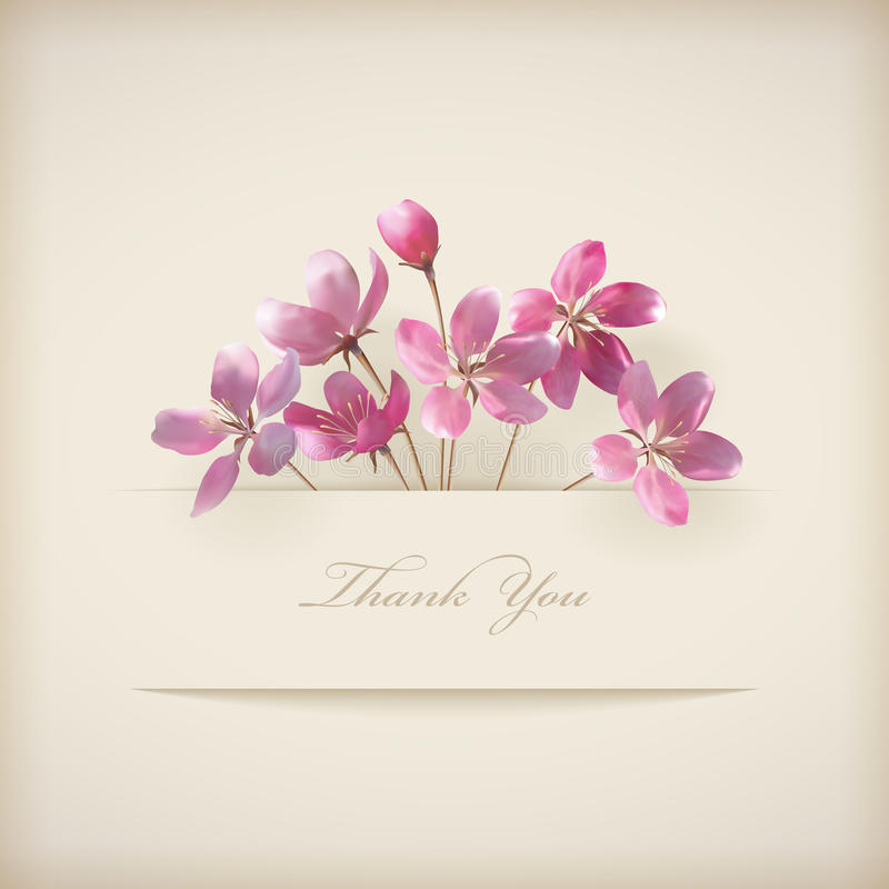 """O vetor floral da mola """"agradece-lhe"""" cartão cor-de-rosa das flores ilustração do vetor"""