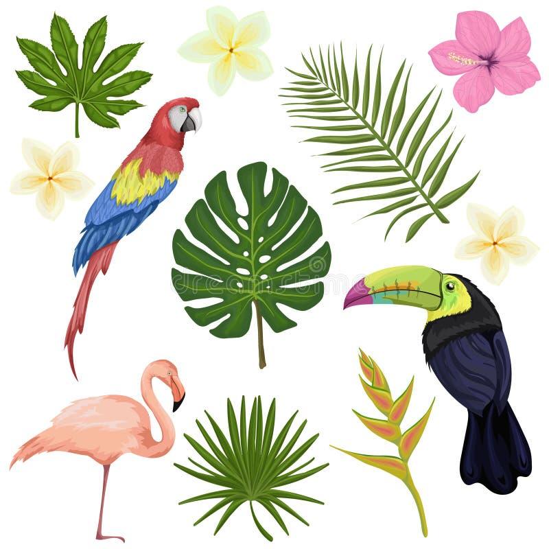 O vetor grande ajustou-se com pássaros e as plantas tropicais ilustração stock