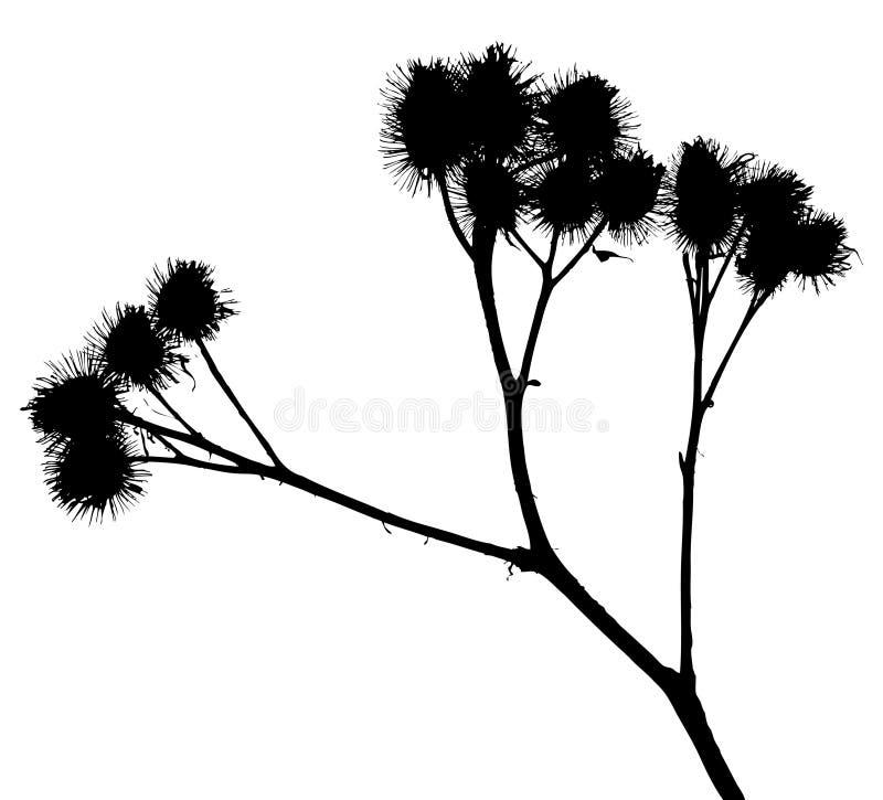 O vetor planta silhuetas ilustração stock