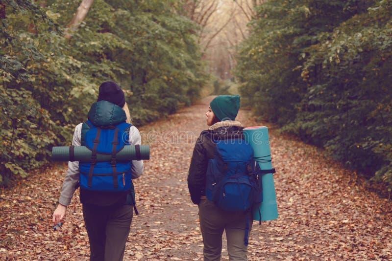 O viajante da amiga com trouxas foi caminhar nas madeiras fotos de stock royalty free