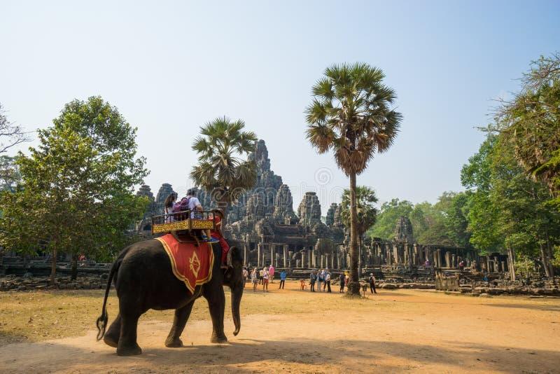 O viajante está montando o elefante em Bakheng imagem de stock royalty free