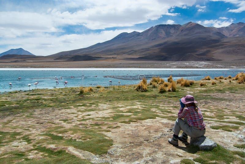 O viajante fêmea novo está observando pássaros em um lago das montanhas - birdwatching imagens de stock
