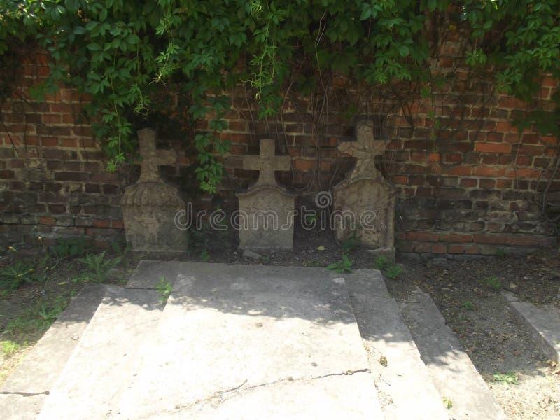 O vintage abandonou lápides no cemitério de Budapest, Hungria imagens de stock royalty free