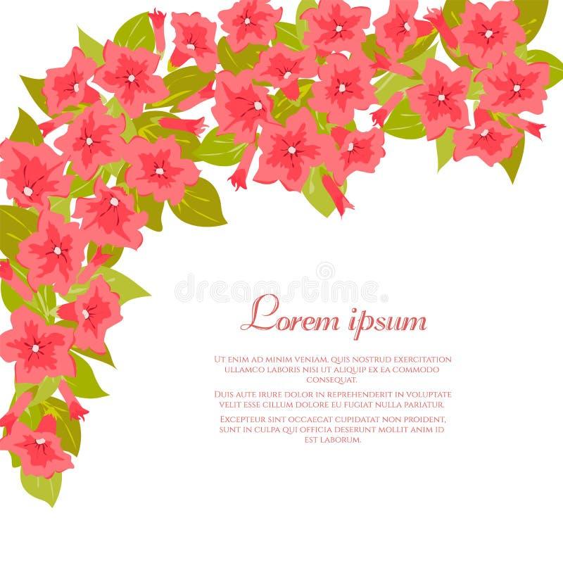 O vintage cor-de-rosa floresce em torno do fundo branco para o convite do casamento, cartão da união, bandeira das felicitações,  ilustração stock