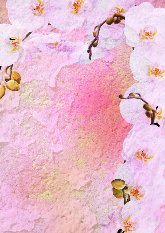 O vintage denominou o frame floral - orquídea foto de stock