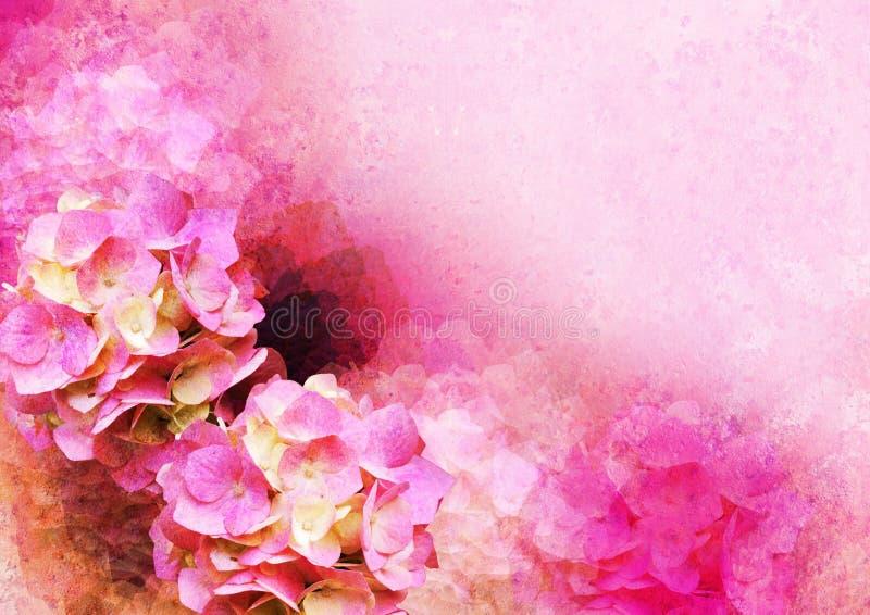 O vintage denominou o frame - hortensia foto de stock