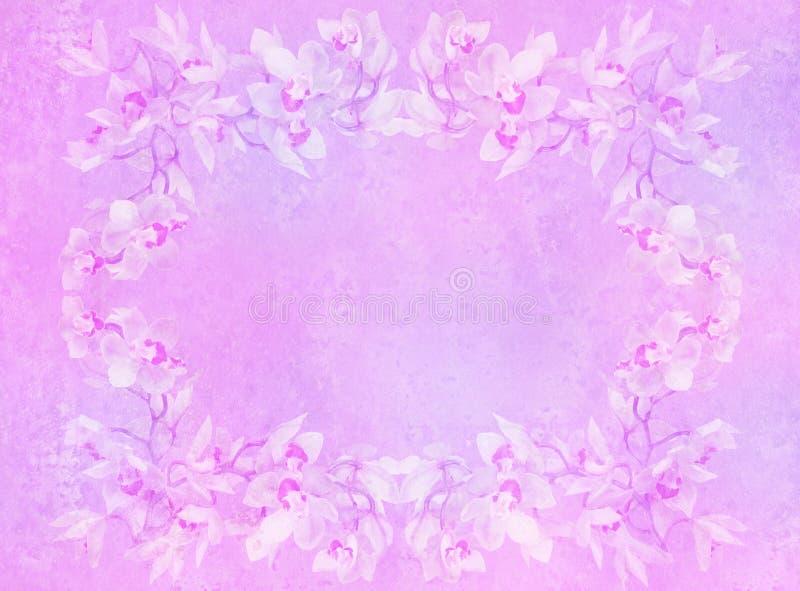 O vintage denominou o frame - orquídeas fotos de stock