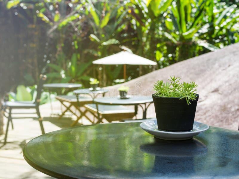 O vintage filtrou na tabela no restaurante e no café exteriores da natureza imagem de stock royalty free