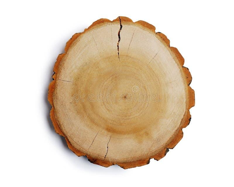 O vintage grande parte circular de seção transversal da madeira com teste padrão da textura do anel de árvore e quebras isolou a  imagem de stock