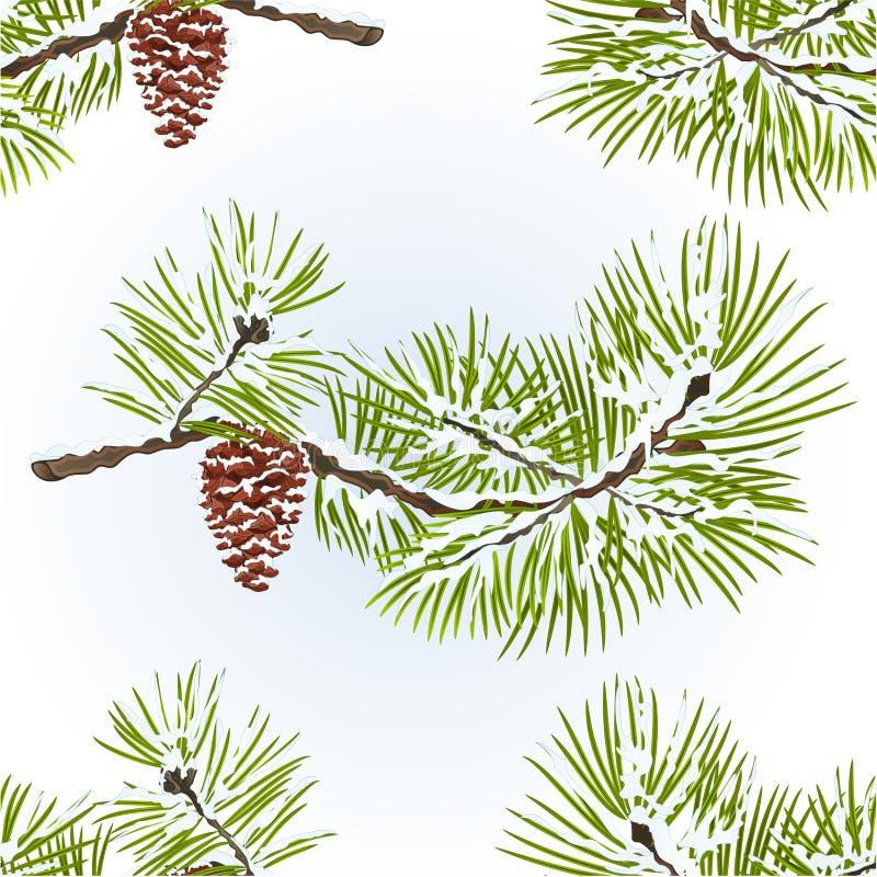 O vintage nevado sem emenda do fundo natural do inverno do ramo do pinho da textura e do cone do pinho vector a ilustração editáv ilustração do vetor