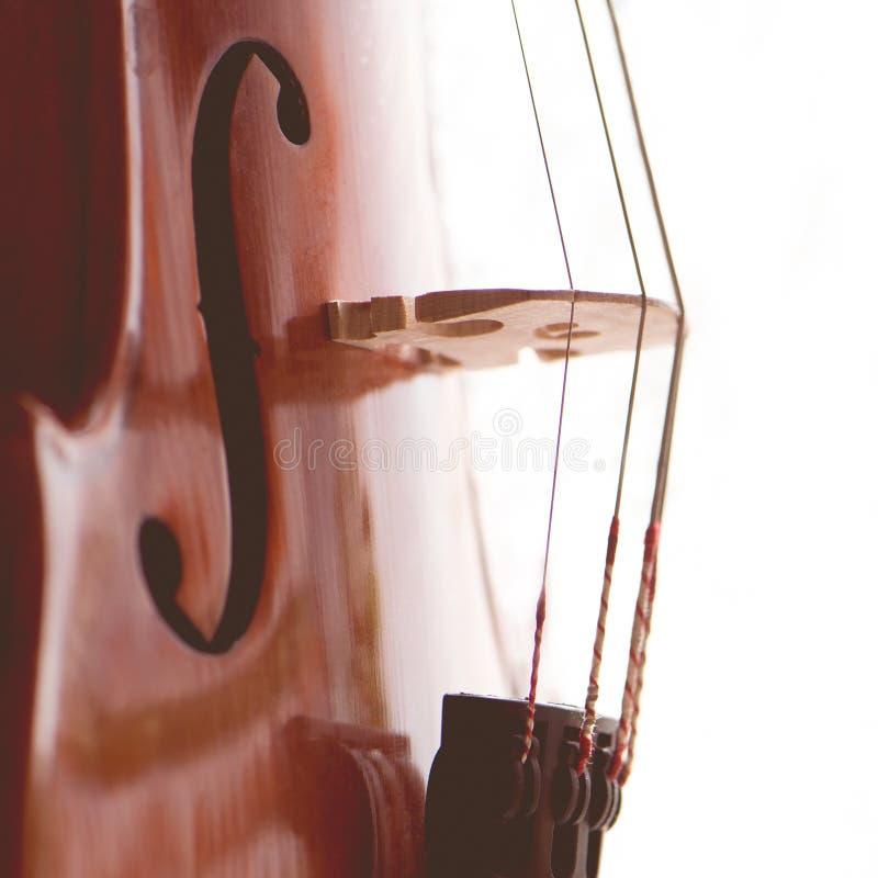 O violino esticado amarra o close-up Foto quadrada Música do conceito imagens de stock