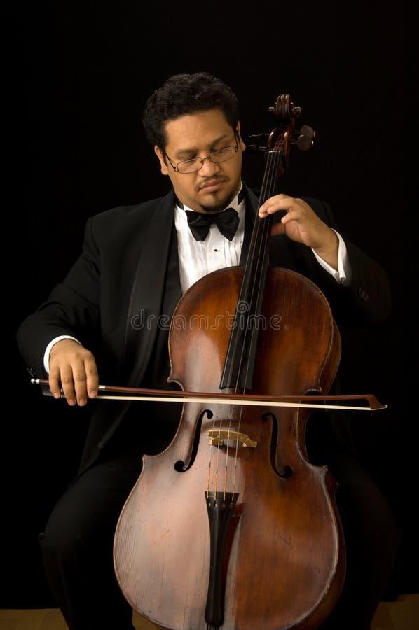 O violoncelista fotos de stock