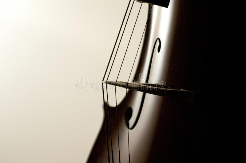 O violoncelo amarra o close-up foto de stock