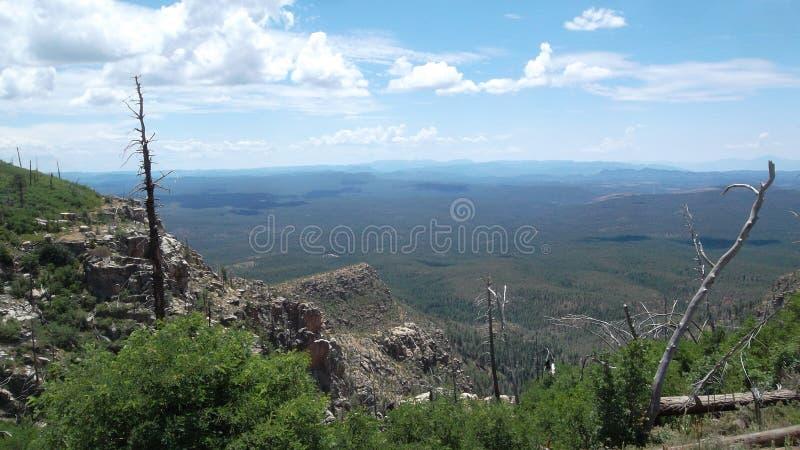 O vizinho do norte do deserto imagens de stock royalty free