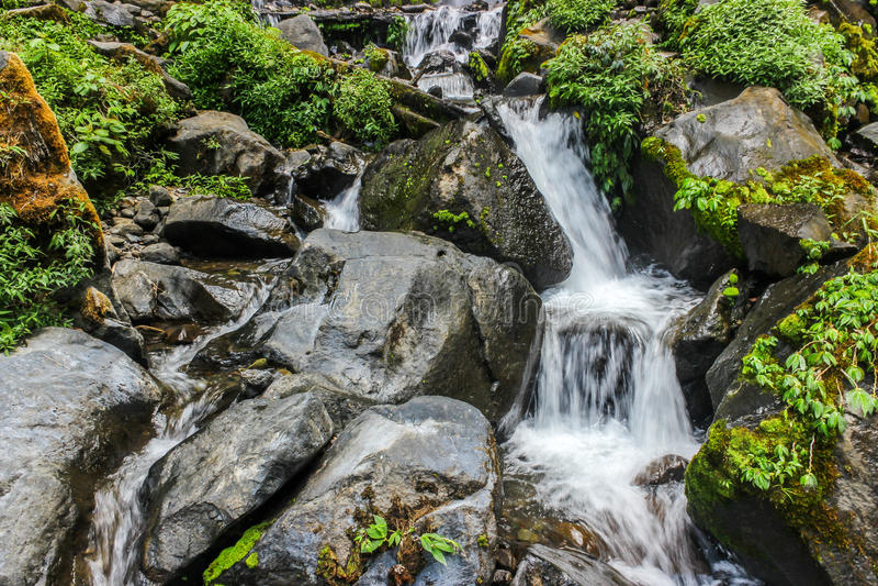 O volume de água na selva foto de stock royalty free