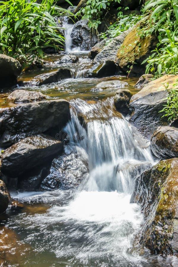O volume de água na selva imagem de stock