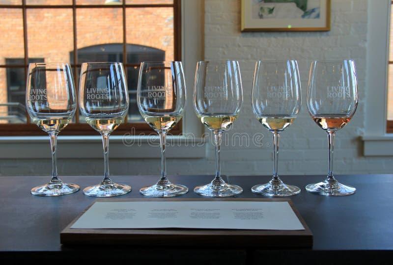 O voo de seis vinhos diferentes ajustou-se provando, raizes de vida Wine & Co, Rochester, New York, 2017 imagens de stock royalty free