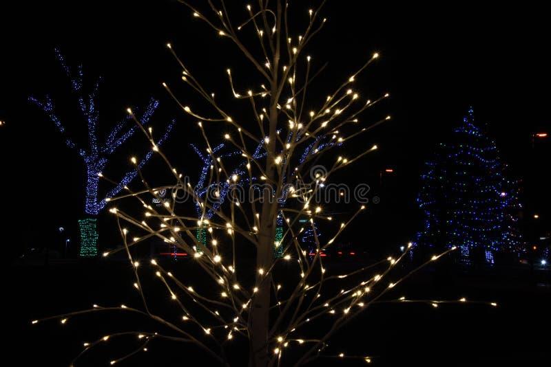 O-Weihnachtsbaum: Lichter bei John Dam Plaza erhellen Feiertage lizenzfreie stockfotografie