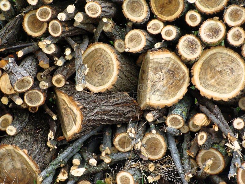 O Woodpile com lenha é empilhado na grama na jarda da casa da quinta foto de stock royalty free