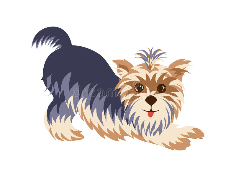 O yorkshire terrier em uma mão engraçada da pose tirada pintou desenhos animados ilustração royalty free