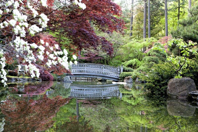 O zen gosta de jardins japoneses imagem de stock