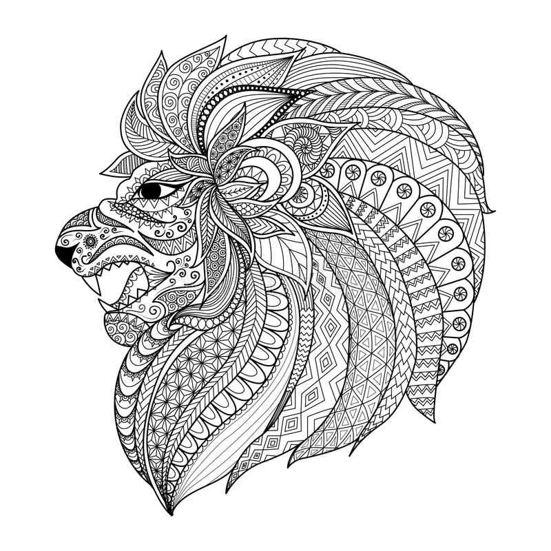 O zentangle detalhado estilizou o leão para o gráfico da camisa de T, páginas para o adulto, cartões do livro para colorir, tatua ilustração royalty free