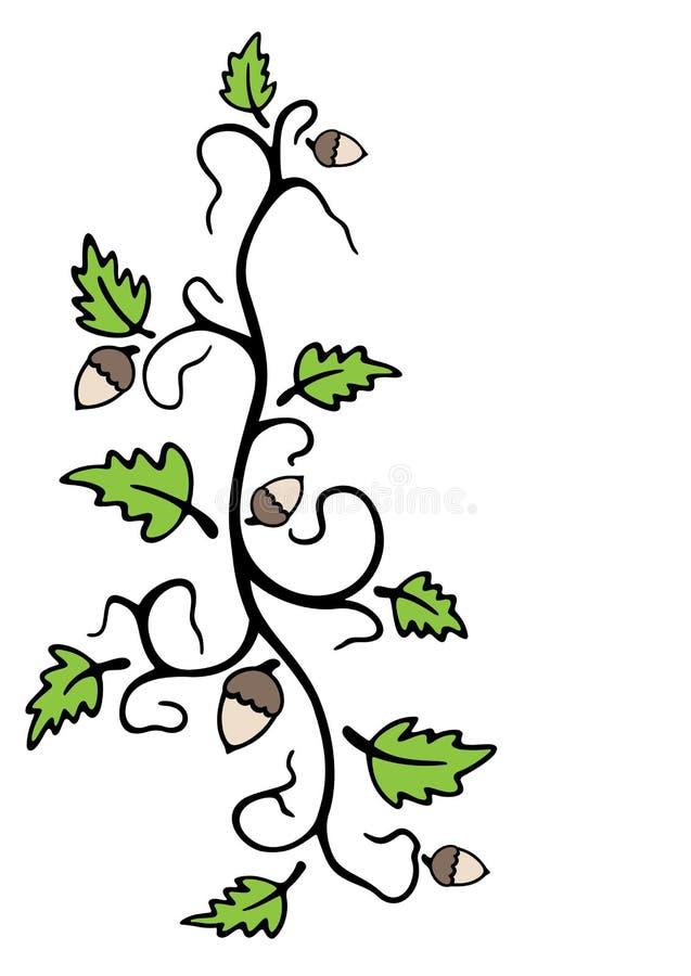 Download Oak and acorns stock vector. Illustration of leaf, forest - 26172474