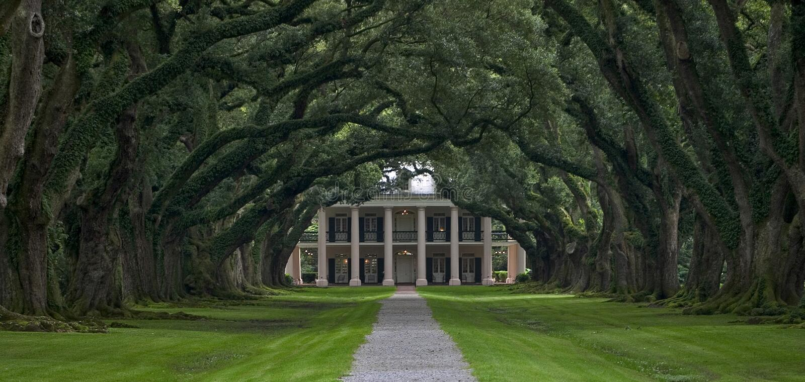 Oak Alley Plantation stock image