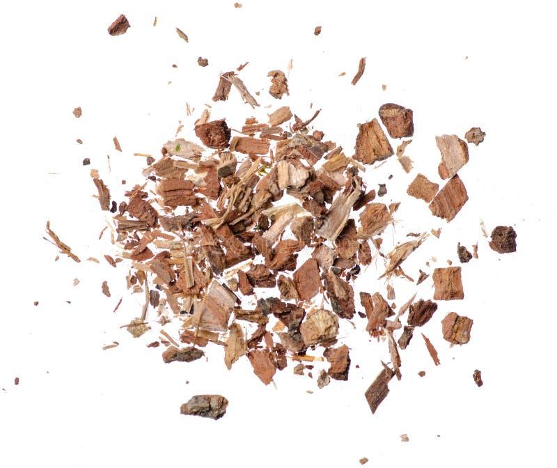 Oak bark herb on white background stock photo
