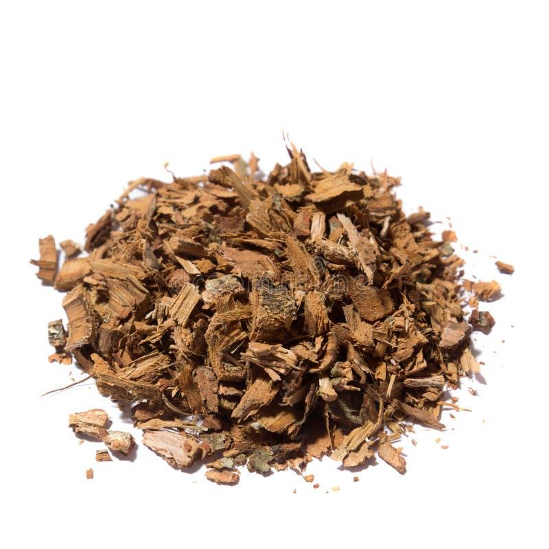 Oak bark tea royalty free stock images