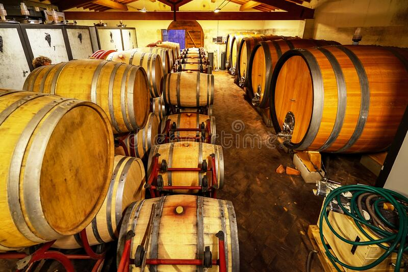 Oak barrels of wine in the basement of an Italian winemaker. Old wine production technology royalty free stock images