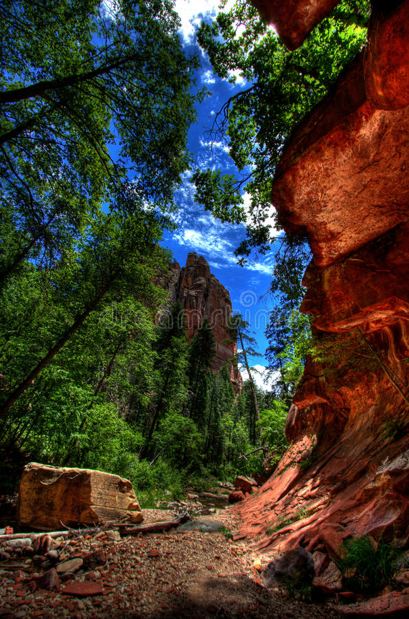 Free Oak Creek Canyon Stock Photos - 12462493