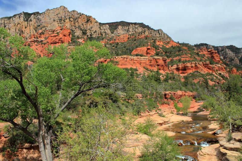 Oak Creek no parque estadual da rocha da corrediça perto de Sedona, o Arizona fotos de stock royalty free