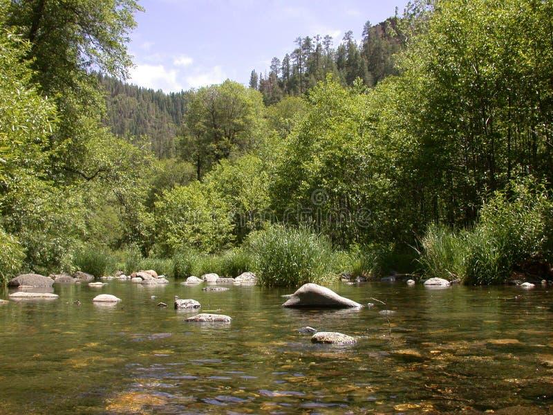Oak Creek Wide royalty free stock photos