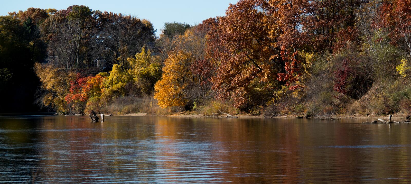 michigan river bank in fall royalty free stock images