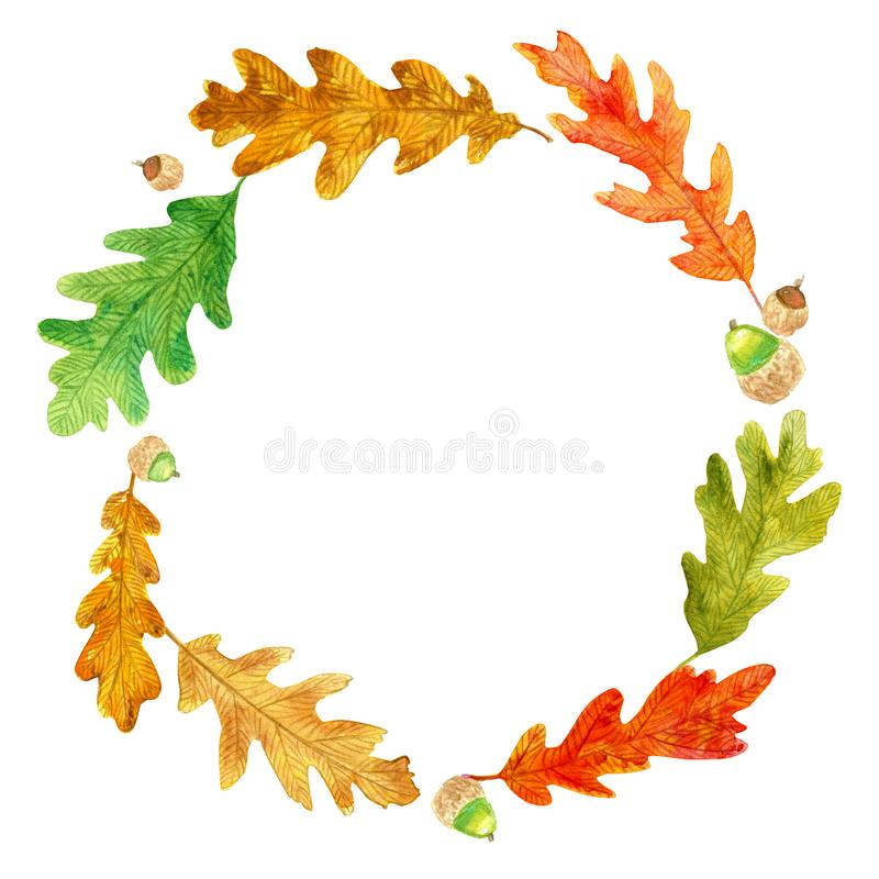 Autumn oak leaves and acorns wreath stock illustration