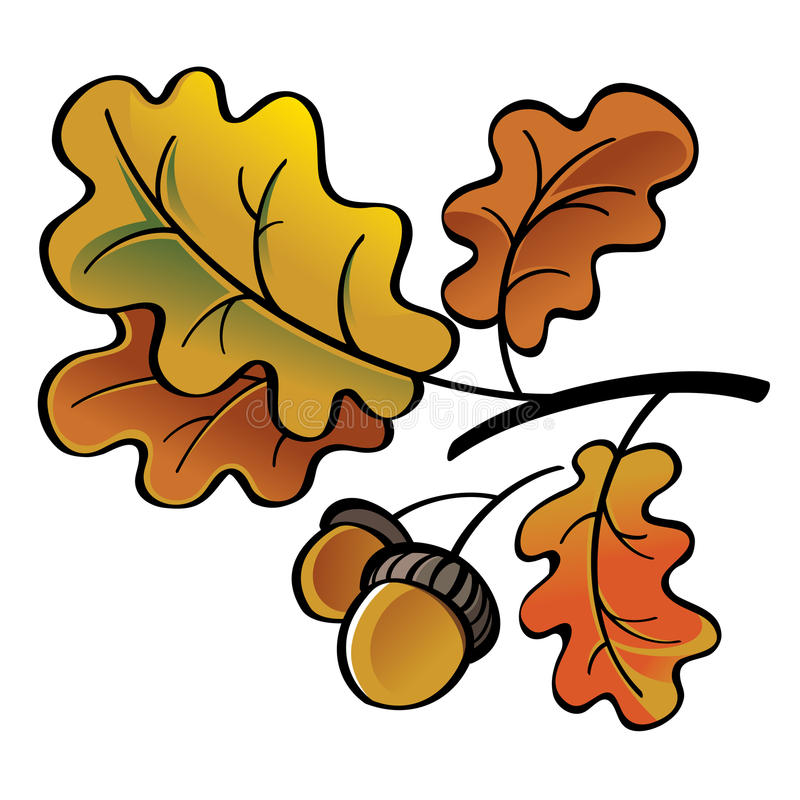 Free Oak Leaves And Acorns Royalty Free Stock Image - 46231566